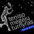 2013 žiema (turnyro logo)